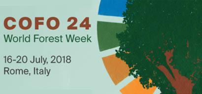 COFO 24 | World Forest Week